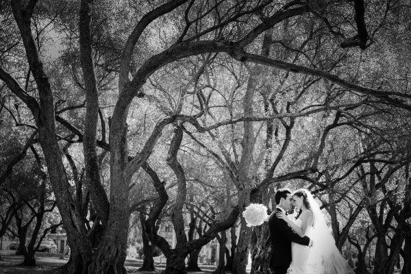 Panache Wedding Photography Adelaide